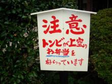 黒毛和牛BAKURO スタッフブログ~福岡市の焼肉屋-看板