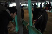 黒毛和牛BAKURO スタッフブログ~福岡市薬院の黒毛和牛焼肉店です。